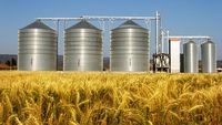 - Graincorp says LTAP takeover bid not sufficiently certain