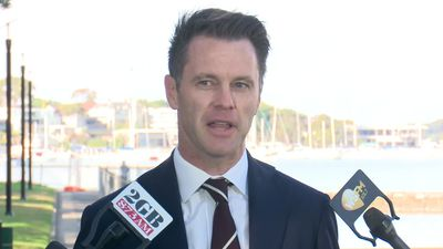I can work with everybody: Minns denies leadership opposition