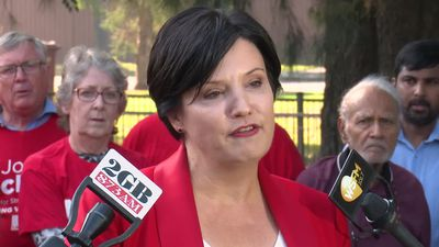 Jodi McKay makes pitch for NSW Labor leadership