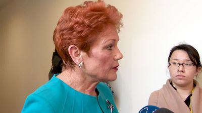Pauline Hanson gets her inquiry into family law system