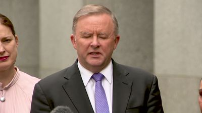 Albanese slams PM for appointing Pauline Hanson to co-chair family law inquiry