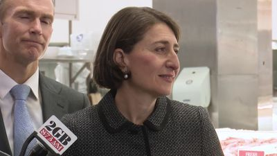"Berejiklian ""absolutely"" wants MP Tanya Davies to stay on"