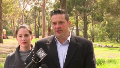 Labor MP who kicked-in the door of a hotel in Canberra apologises as he returns to work