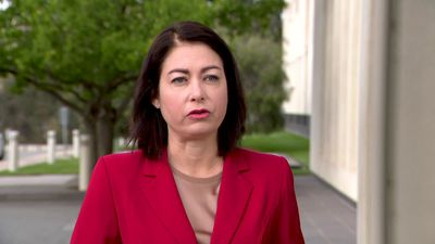 Terri Butler claims the government is 'loose with the truth' regarding dam funding