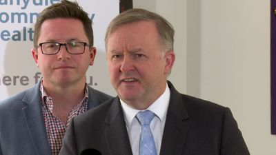 Albanese says Labor's caveats for the Indonesian free trade agreement are reasonable