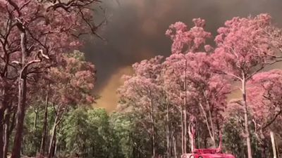 RAW: Scene at Putty Road, Colo Heights as Gospers Mountain blaze closes in