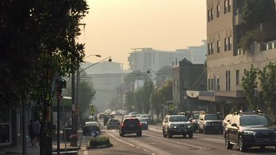 RAW: Sydney streets shrouded in smoke