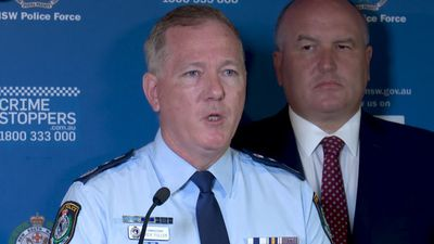 More detectives to investigate NSW fires
