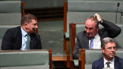 Joyce, Canavan warn National Party could disappear