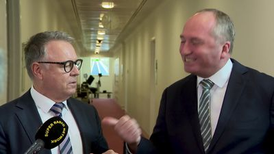 Barnaby Joyce and Joel Fitzgibbon argue about zero emissions