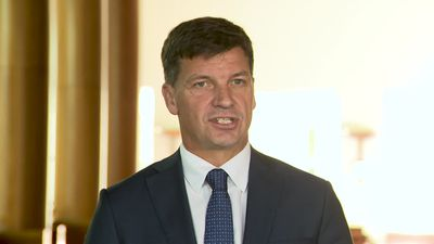 Tayor says Labor has no plan when it comes to emissions reduction