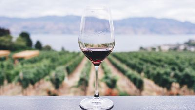 Expensive wine is the cure to lock-down woes