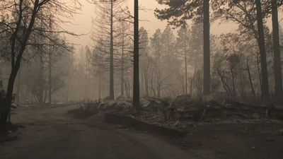 """California: thousands displaced in the wake of the """"Camp Fire"""""""