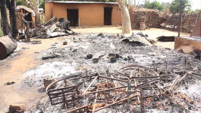 Nine farmers killed in Boko Haram attack in Nigeria