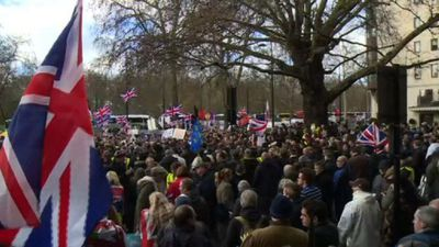 UKIP holds pro-Brexit rally in London