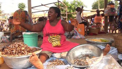 Togo's barter market: keeping tradition alive and poverty at bay