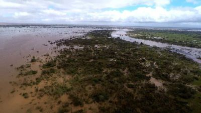 Aerial footage shows scale of floods in Mozambique after cyclone