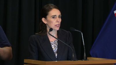 New Zealand bans sale of assault, semi-automatic rifles: PM