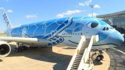Airbus delivers A380 decorated with turtles to Japan