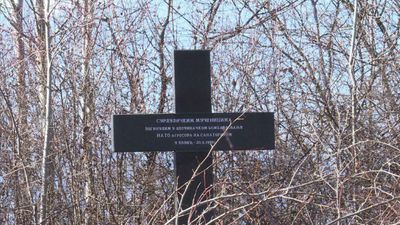 """Serbian victims of NATO's deadly """"mistakes"""" feel forgotten"""