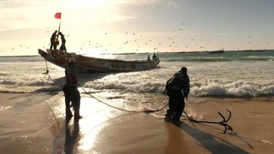 Senegalese fishermen hope for bumper catch in Mauritanian waters