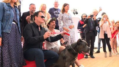 Tarantino accepts 'Palm Dog' for 'Once Upon a Time...' canine