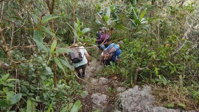Trans-Brazil hiking trail raises hopes for future of Atlantic Forest