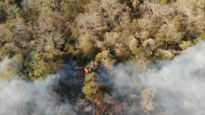 Images of wildfires in Bolivia