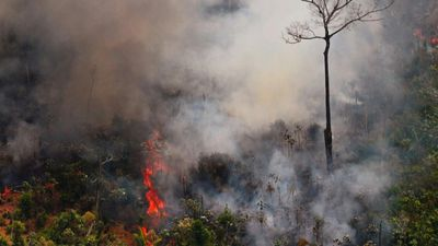 PHOTOS: Fire hits Brazil's Rondonia state Amazon rainforest