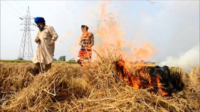 Indian farmers burn crop stubble despite Delhi ban