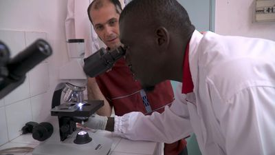 Ivory Coast lab aims to rid Africa of the 'sleeping sickness'