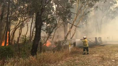 Firefighters battle bushfires outside Sydney