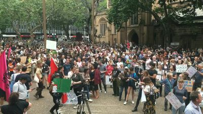Australians join Sydney climate protest as bushfires rage