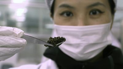Caviar 'queen': Chinese roe reigns around the world