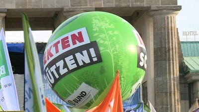 Demonstrations in Berlin over agricultural reform