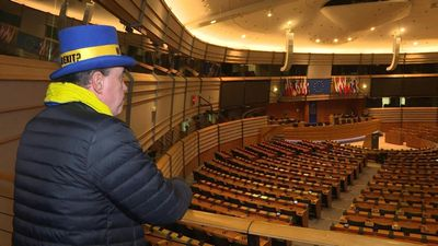 """Mr Stop Brexit"" visits EU Parliament"