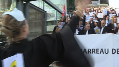 Bordeaux lawyers sing pop hit parody to protest pension reform