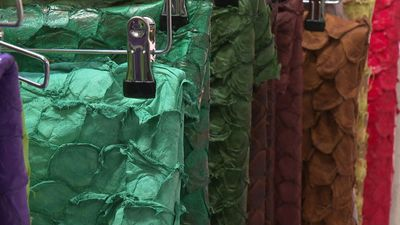 Future Fabrics expo aims to revolutionise fashion with materials