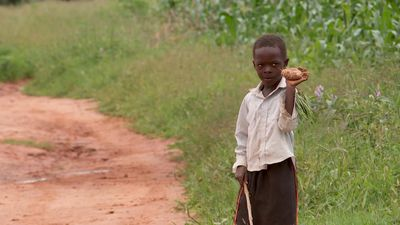 A meal a day: struggling to survive climate change in Zambia