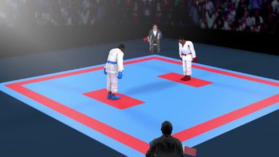 Rules of karate explained