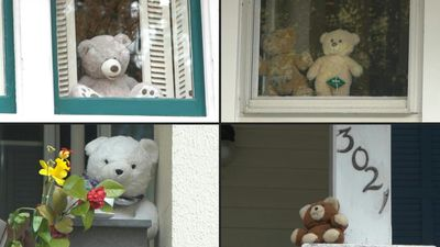 DC residents use teddy bears to bond during coronavirus confinement