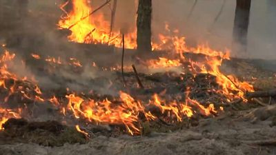 Forest fire intensifies in Chernobyl nuclear zone
