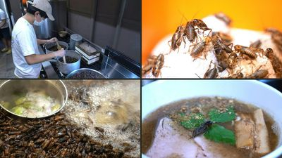 Japan insect enthusiast puts cricket ramen on the menu