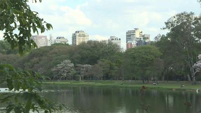 Sao Paulo residents enjoy city's biggest park as it reopens after lockdown