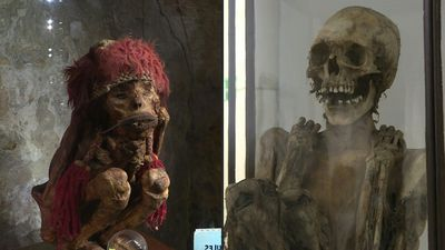 An old mummy linked to famous fictional reporter Tintin sows discord in Belgium
