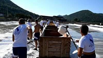 Traditional salt harvest continues in Croatia