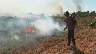 Fires rage in Brazilian Amazon, reach farms
