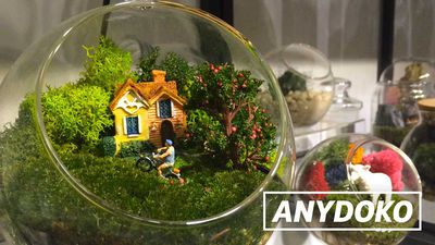 Everyday HK - Terrarium Workshop In Kwun Tong