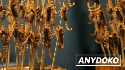 Hawker Style - Fried Scorpions In Beijing