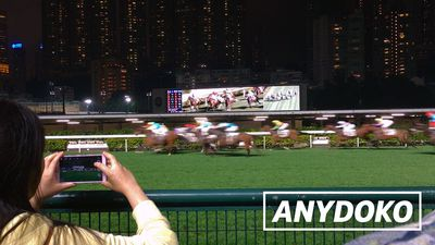 ANYDOKO Shorts - Happy Valley Racecourse